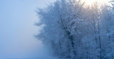 Nadciągają śnieżyce. Alert ogłoszono w 10 województwach